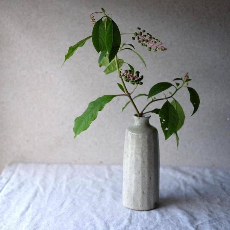 sasaki205